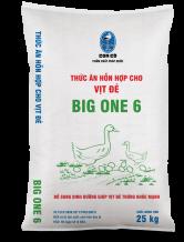 Big One 6